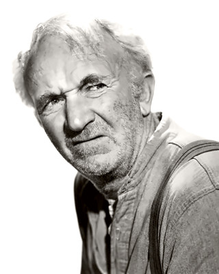 Actor Walter Brennan