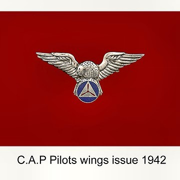 Civil Air Patrol wings