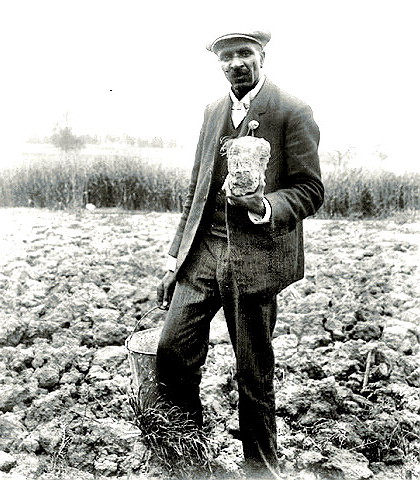 George Washington Carver in the field