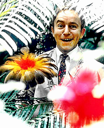 Comedian Henry Gibson