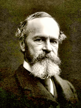 Psychologist William James