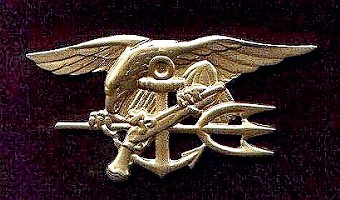 SEAL Special Warfare badge