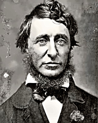 Writer Henry David Thoreau